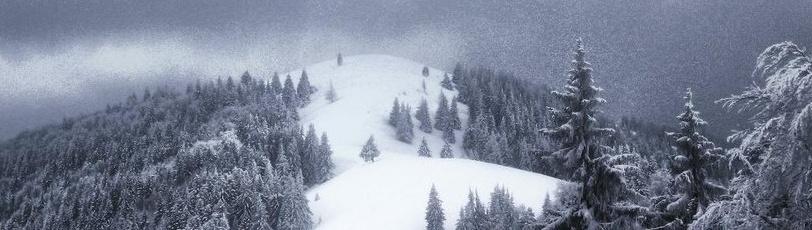 Un début d'hiver /LIBRE/ Captur18