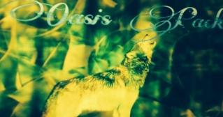 Oasis Pack -Samara- Image19