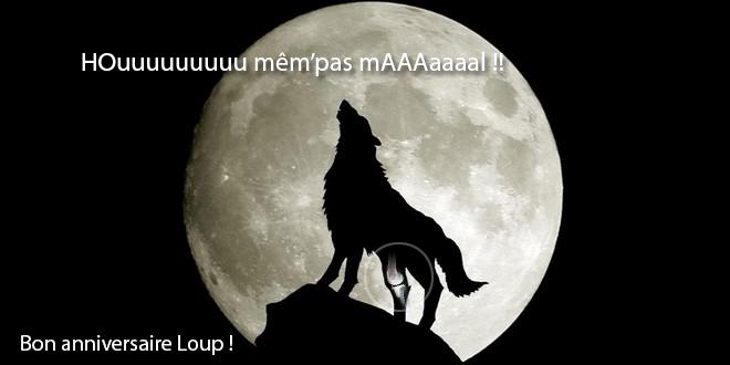 Bon Anniversaire WhiteWolf28110 !!!! Loup11