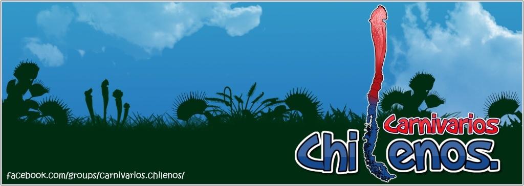 Carnivarios Chilenos