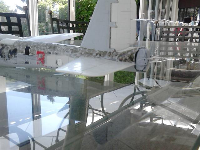 Luftwaffe 46 et autres projets de l'axe à toutes les échelles(Bf 109 G10 erla luft46). Dsc_4126