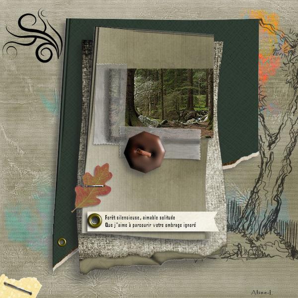 La galerie de NOVEMBRE - Page 2 Challe24
