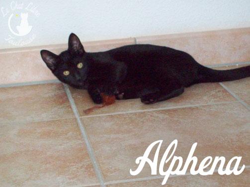 ALPHENA Alphen10