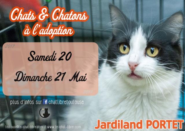 [ Adoptions ] Samedi 20 & Dimanche 21 mai2017 :  Jardiland Portet Jardil13