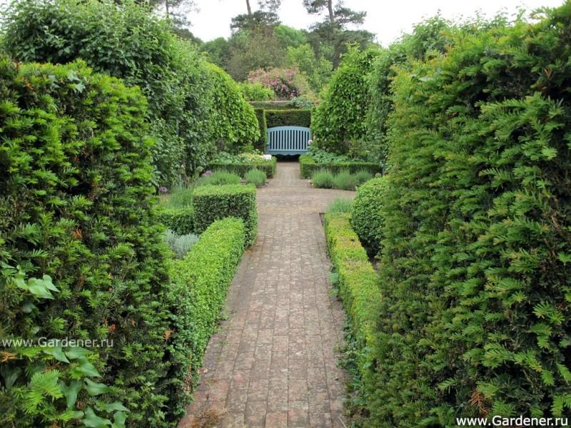 Сады и парки мира на портале gardener.ru 3610