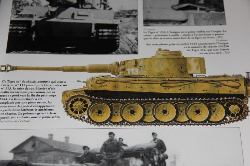 Tigre I early Dragon 1/35 TERMINE Img_6610