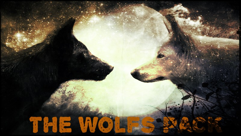 The Wolfs Pack! [OPEN FOR NEW MEMBERS!!] Wolf-w10