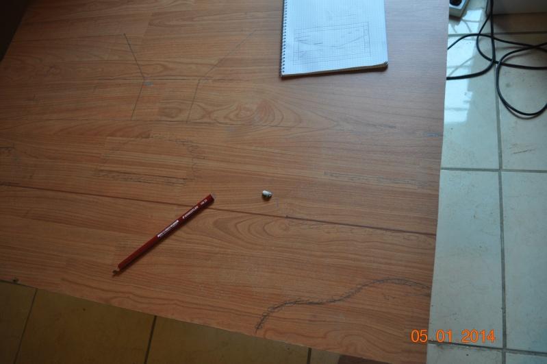 Construction terrarium à étage. Dsc_0312