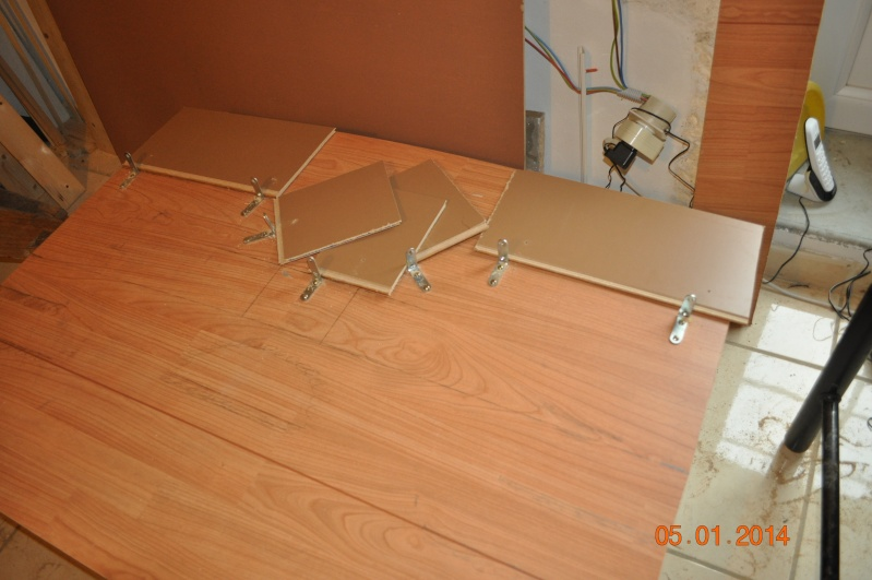 Construction terrarium à étage. Dsc_0313