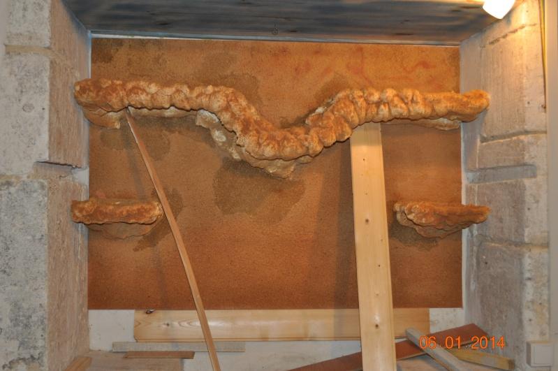 Construction terrarium à étage. Dsc_0317