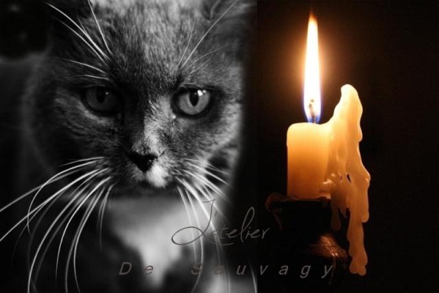 L'atelier de Sauvagy  Candle10