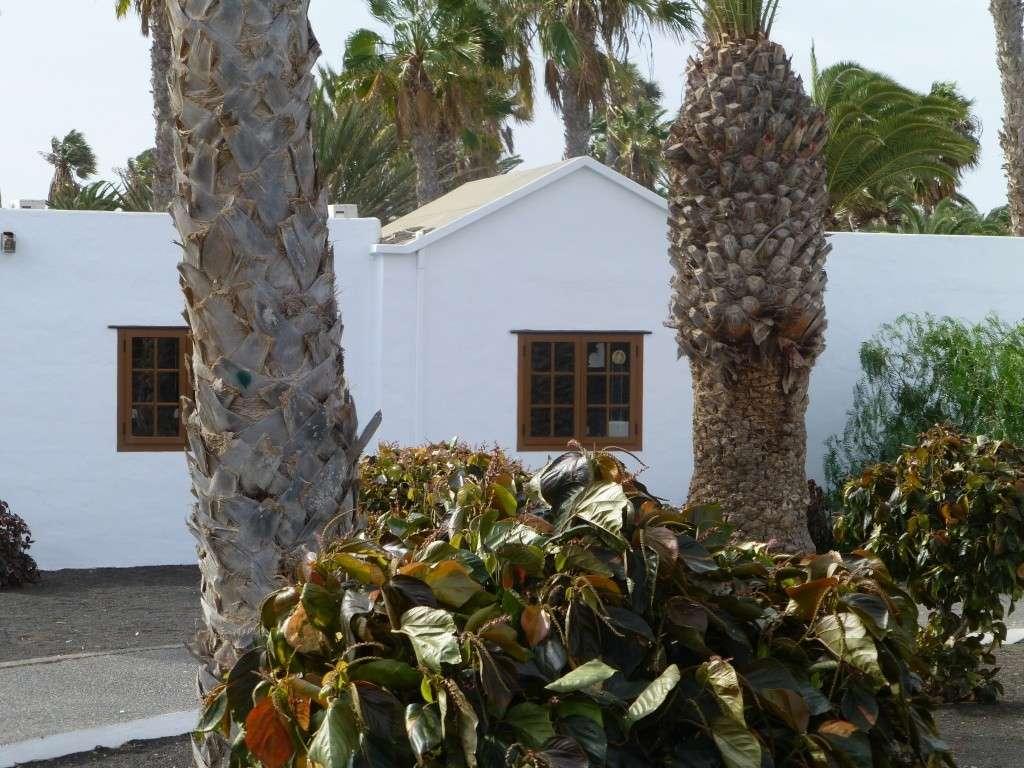 Canary Islands, Lanzarote, Playa Blanca, 2013 - Page 2 04615