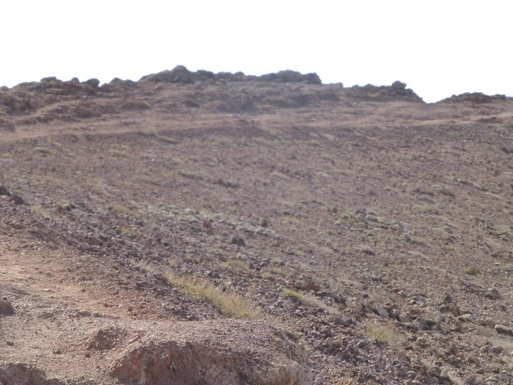 Canary Islands, Lanzarote, Playa Blanca, 2013 - Page 2 06214