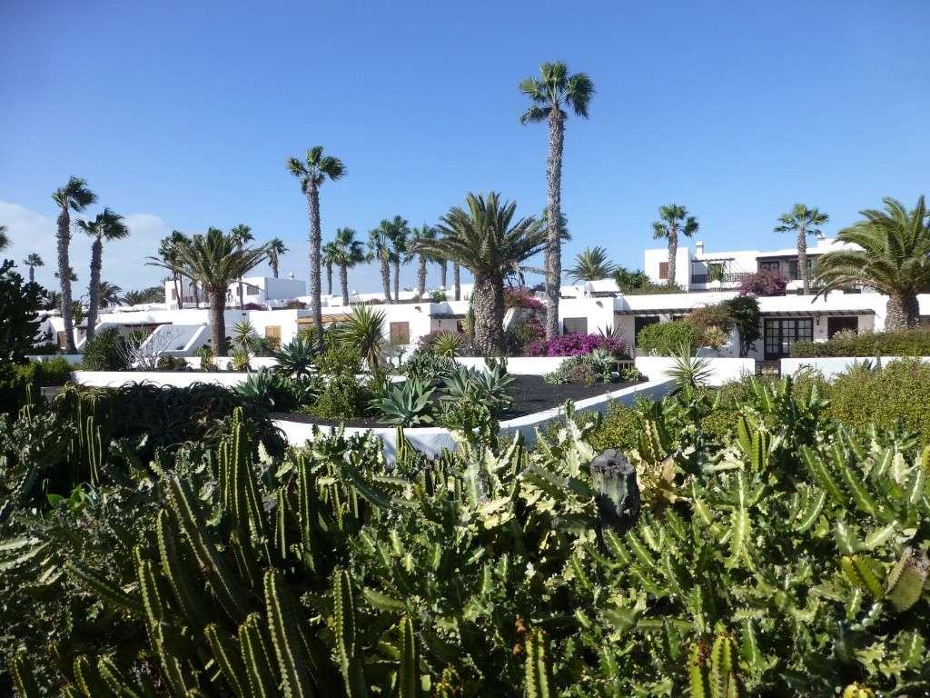 Canary Islands, Lanzarote, Playa Blanca, 2013 10810