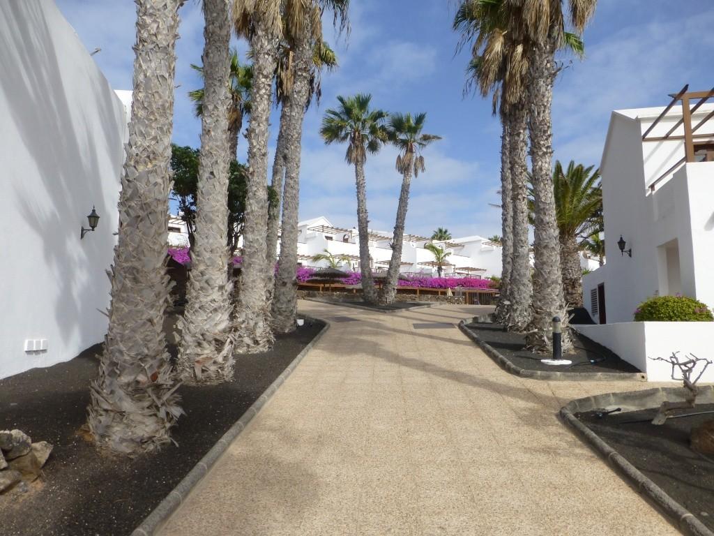 Canary Islands, Lanzarote, Playa Blanca, 2013 12410