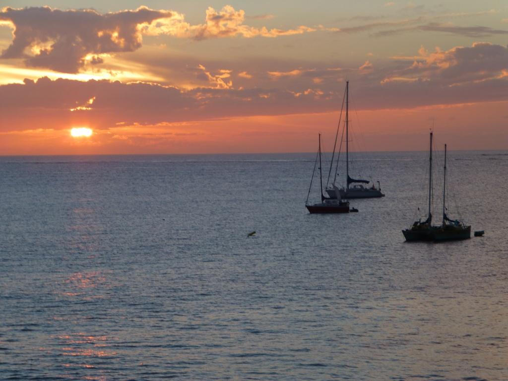 Canary Islands, Lanzarote, Playa Blanca, 2013 - Page 2 15511