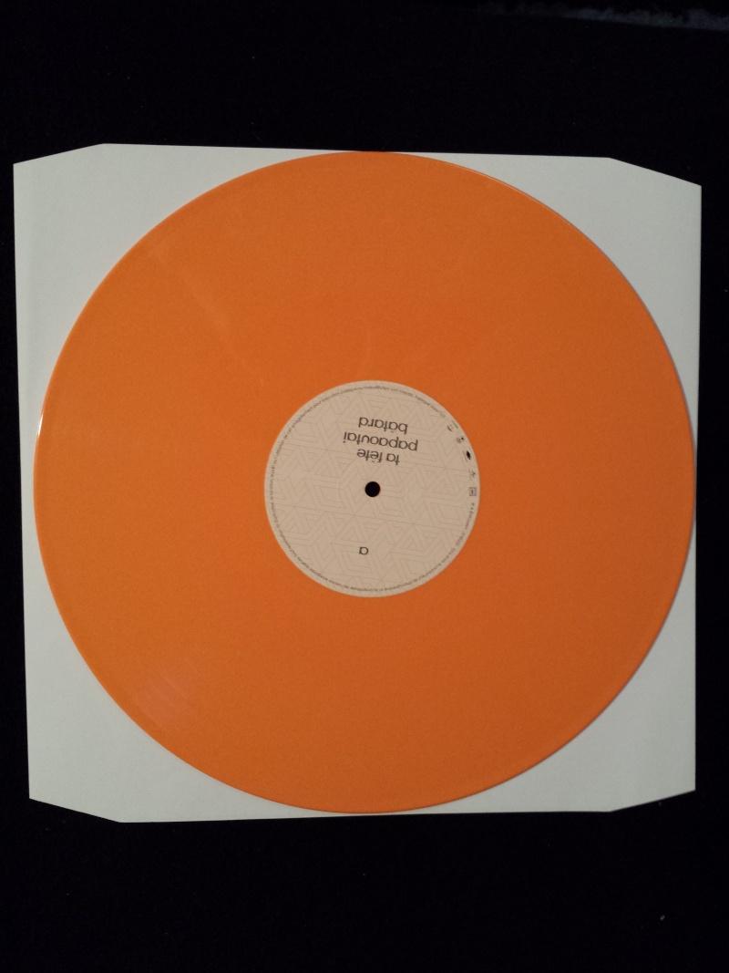 DISCOGRAPHIE Vinyl10
