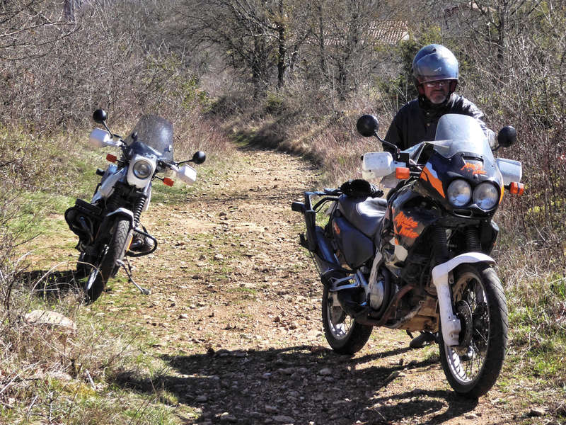 AFRICA TWIN  P1150910