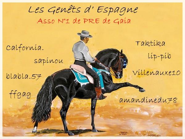 ~ Les Genêts d'Espagne ~