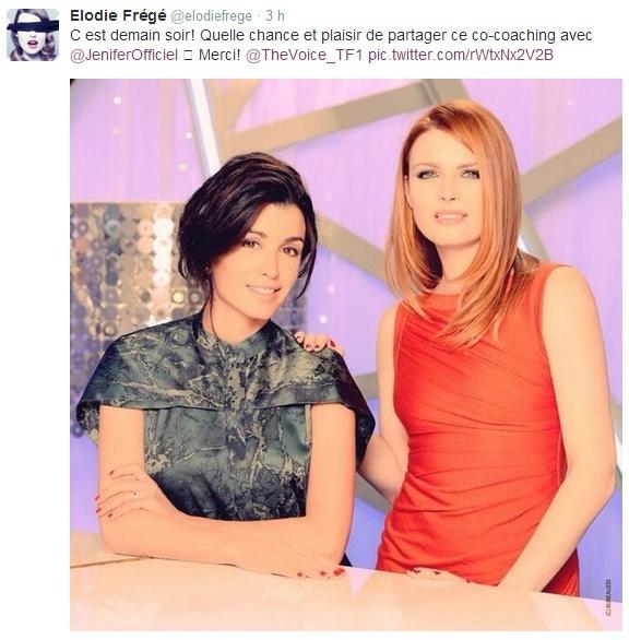 Messages d'Elodie Frégé sur Twitter (de Février 2010 à Mai 2014) - Page 9 Captur61
