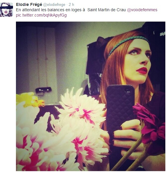Messages d'Elodie Frégé sur Twitter (de Février 2010 à Mai 2014) - Page 9 Captur74