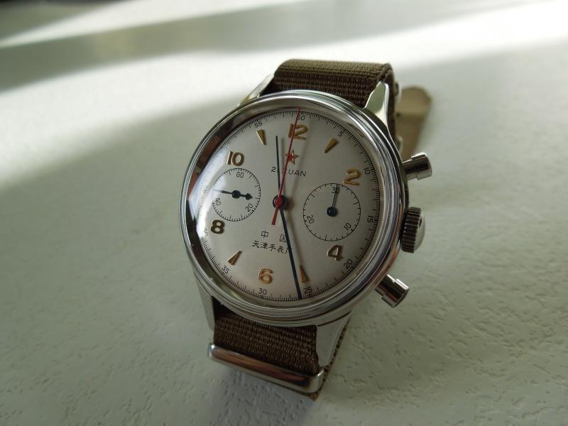 POLJOT 5374 Aeronavigator Alarm 45 mm ou SEAGULL 1963 ? Dscn5516
