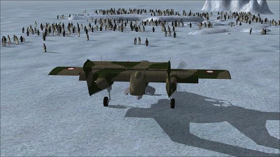 Antartica X Pingou10