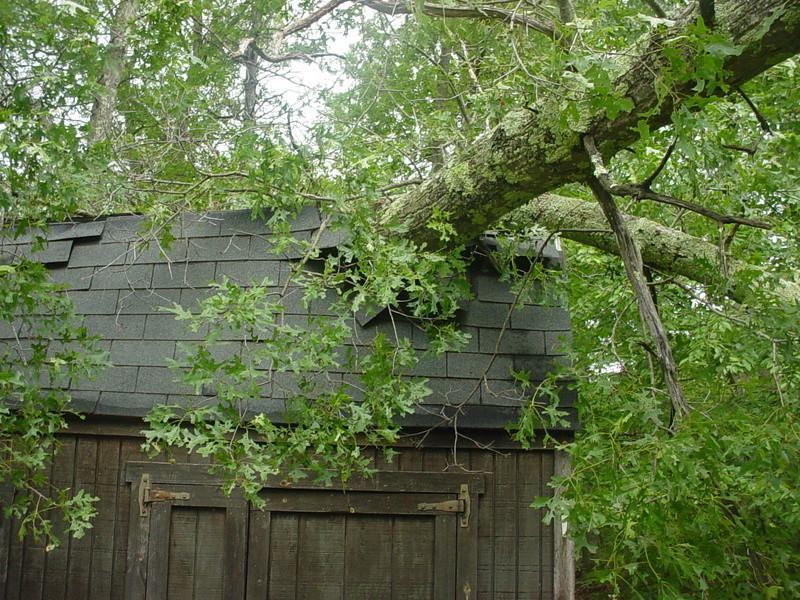 Storm damage Dsc04211