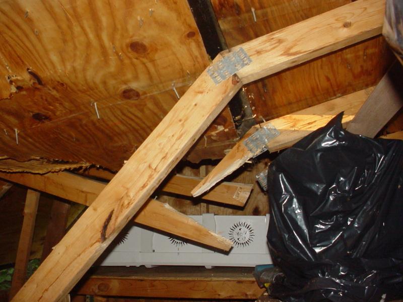 Storm damage Dsc04225