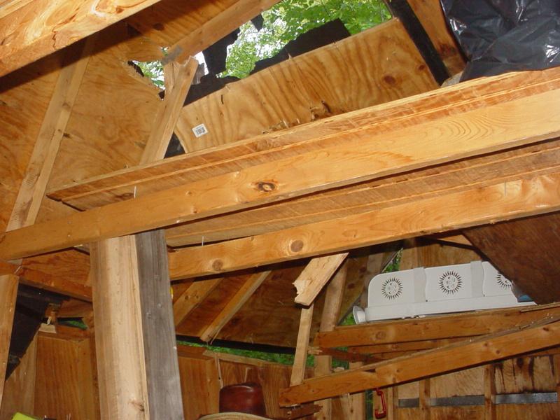 Storm damage Dsc04227