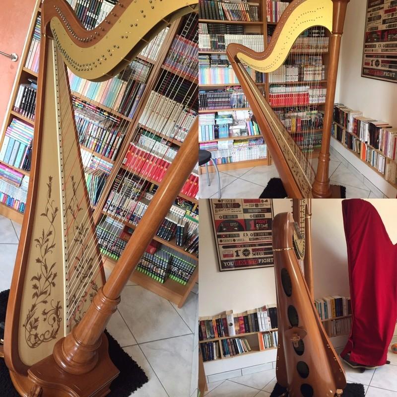 Harpe à pédales - Page 2 Img_5110