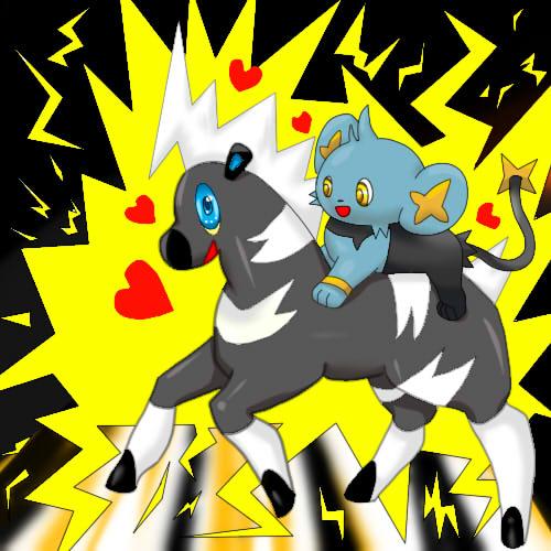 Mes couplings pokemon préférés? pokemonxpokemon!!! Zeblit10