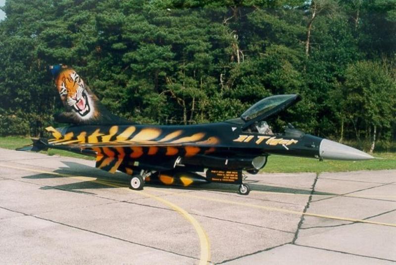 f-16A - force aérienne belge - tiger meet 1998 - ( kit revell 1/72 + decals eagle strike ) Ajg10