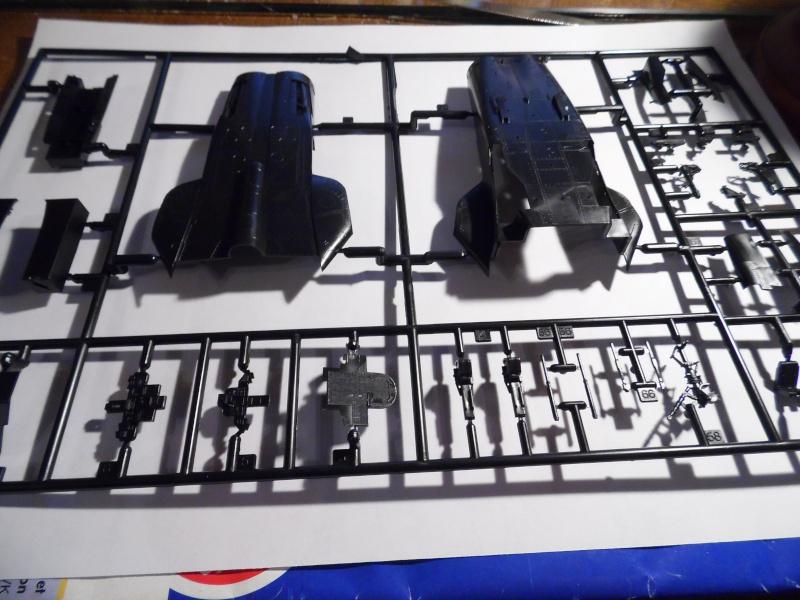 "Panavia Tornado "" Black Panther "" ( kit revell 1/72 ) Sam_0177"