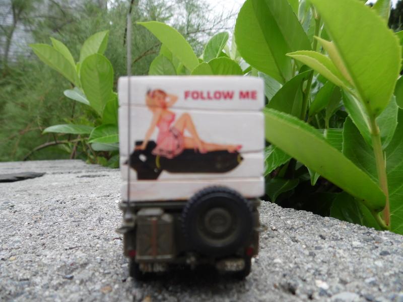 Follow me ( Hasegawa 1/48) Sam_1013