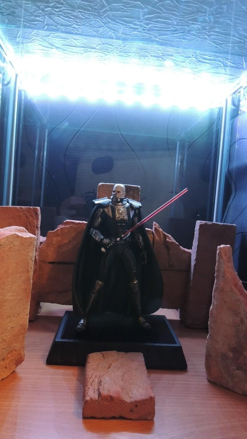 Collection n°189:Collec Star Wars sideshow hot toys koto etc Dscn5315