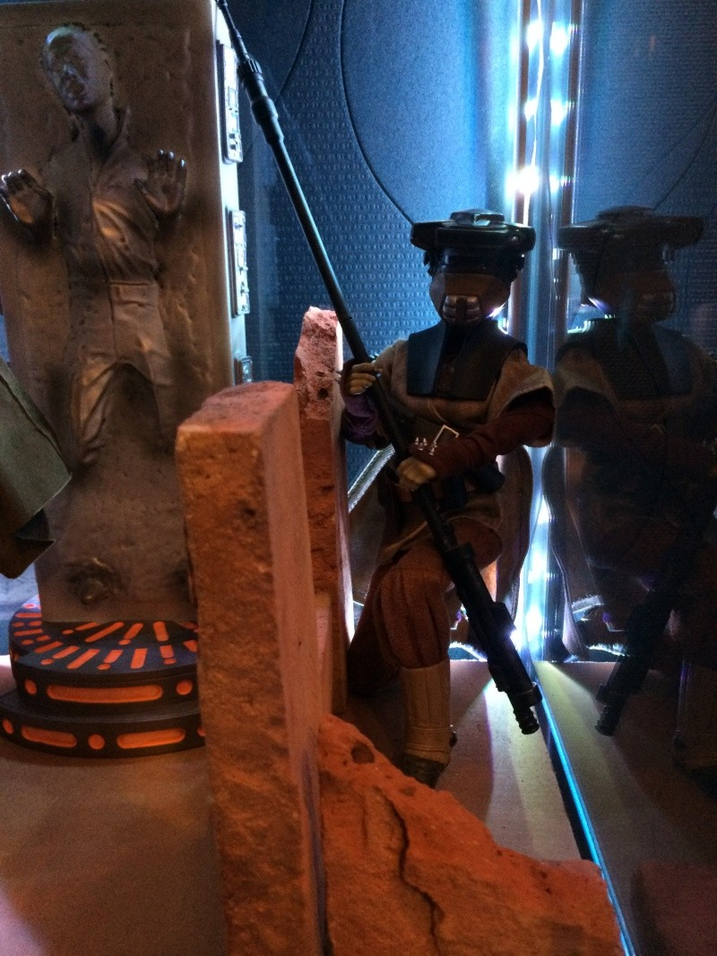 Collection n°189:Collec Star Wars sideshow hot toys koto etc Img_1615