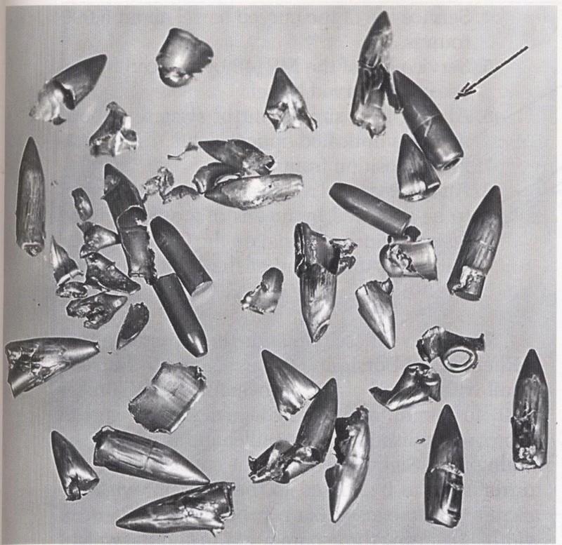 German Wehrmacht Cavalry 1/16 Dragon fini! Balles10