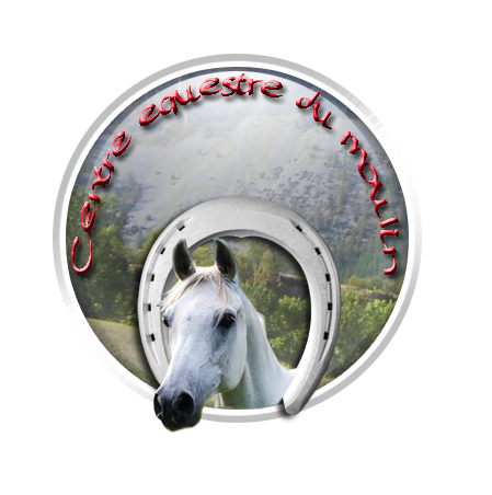 [FAIT] Logo pour Centre Equestre Testlo10