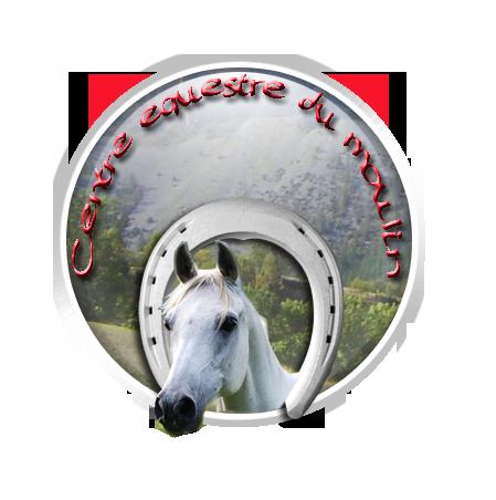[FAIT] Logo pour Centre Equestre Testlo12
