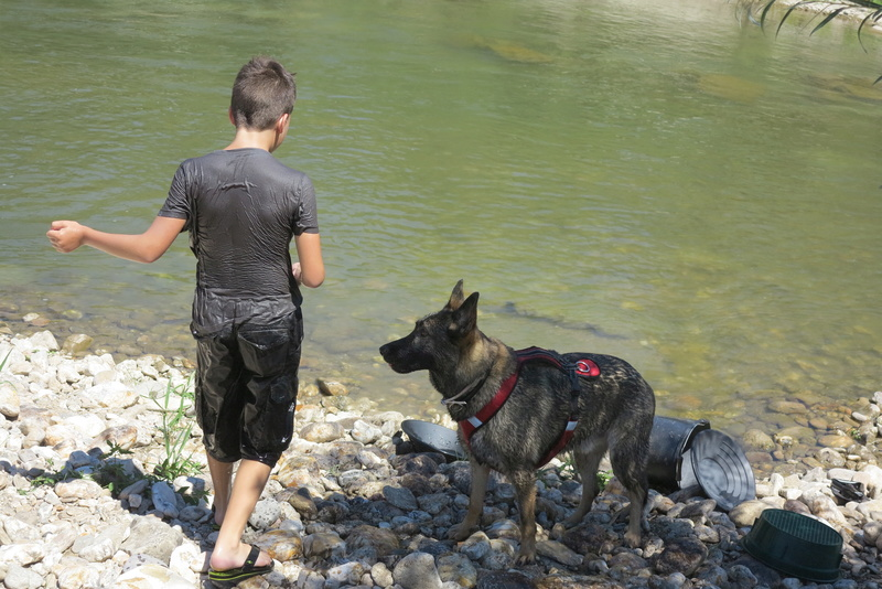 Ico, berger allemand et Misca, leonberg. - Page 5 Img_4213