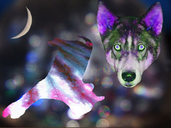 Assignment 15: Clipping masks Due Nov 12 Wolfma10