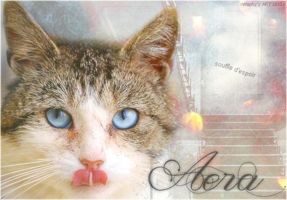 ~ Sorrow ~ Aera_s10