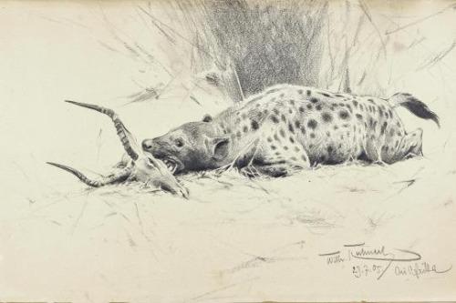 Les animaux peints à l'AQUARELLE - Page 6 Aq_caa10