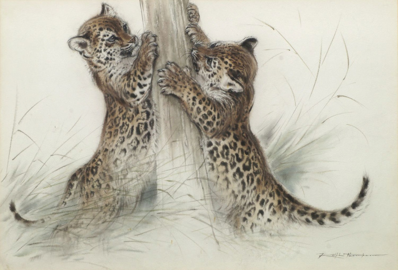 Les animaux peints à l'AQUARELLE - Page 6 Aq_dx10