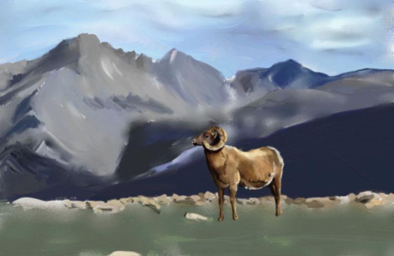 Les animaux peints à l'AQUARELLE - Page 5 Aq_mou10