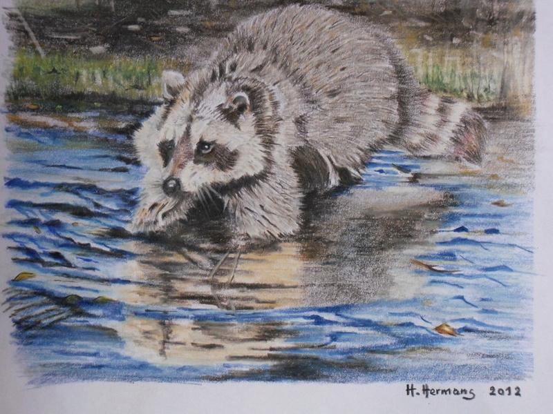 Les animaux peints à l'AQUARELLE - Page 6 Aq_ra10