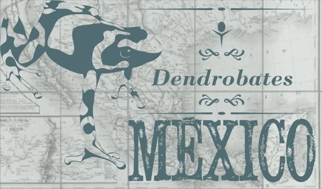 Foro Dendrobates México