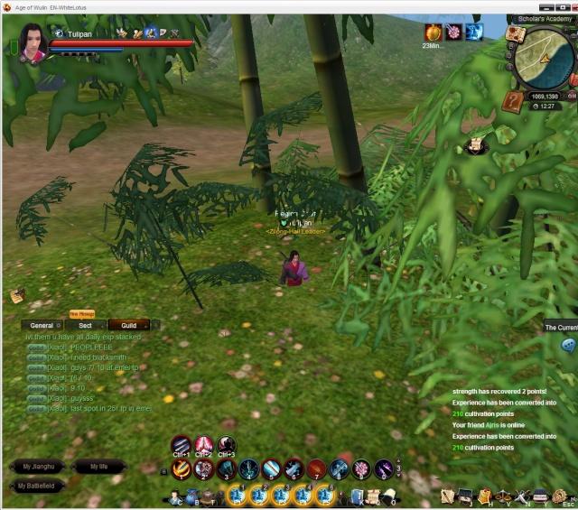 Funny screen/bugs Bugwgr11