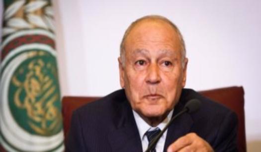الجامعة العربية: لدينا 3 مليون طفل لم يذهبوا للمدارس قد يصبحوا ارهابيين 02213